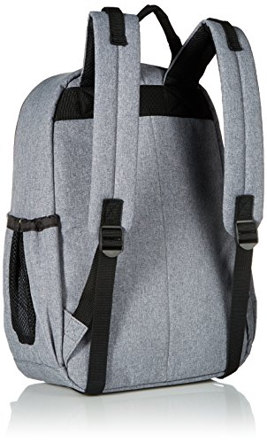 Skip Hop Duo baby bag backpack
